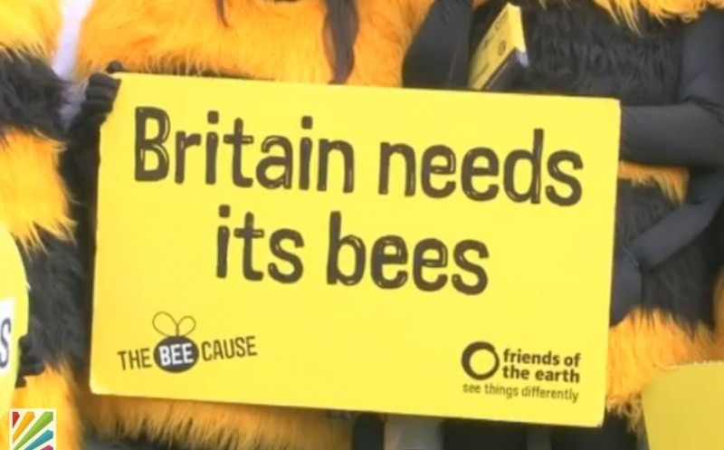 Britain Needs its Bees - protest poster at rally against use of chemicals that destroy bee colonies